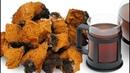 Чага - берёзовый гриб! Способы лечения гастрита, бронхита, гепатита, аритмии..!