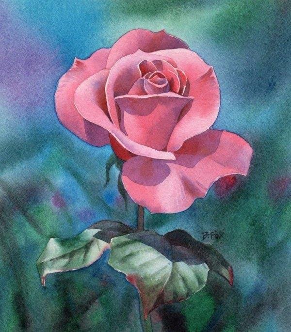 нарисовать розу акварелью фото професійного фотографа