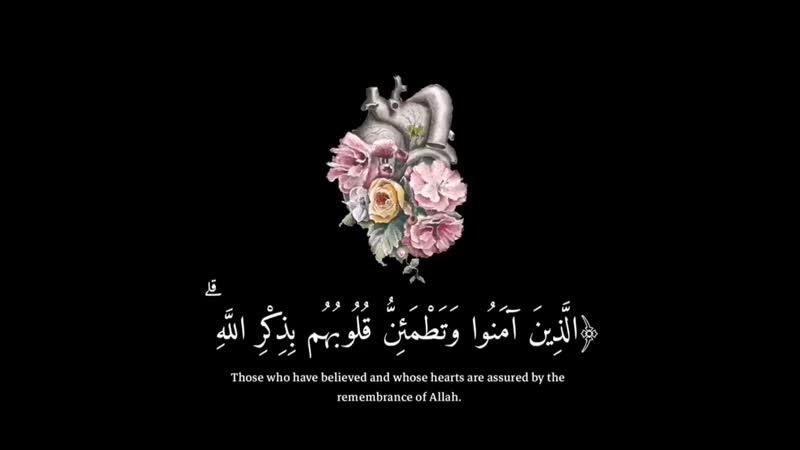 القرآن الكريم on Instagram اكتب اي شي توجر علي MP4