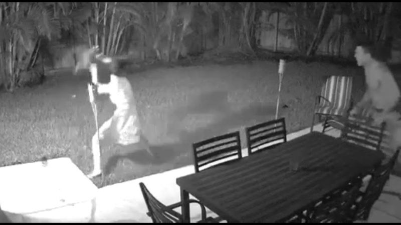 Эпичная битва девушки и енота попала на видео Epic battle of the girl and the raccoon hit the video
