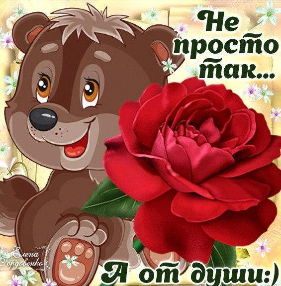 цветы, пожелание хорошему человеку просто так в картинках праздник