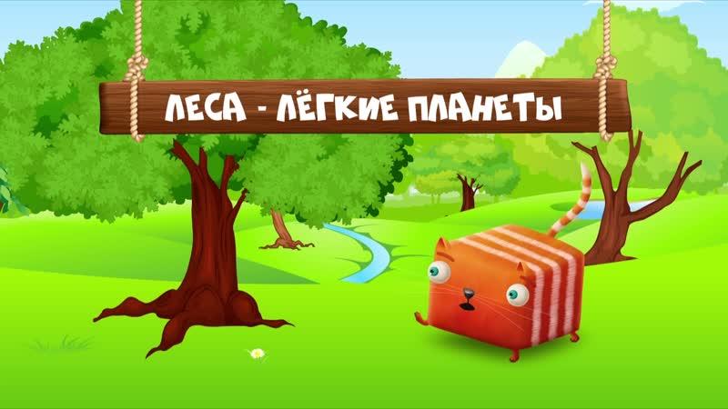 CTC Razvlechyoba SE01 EP25 Про солнце и растения