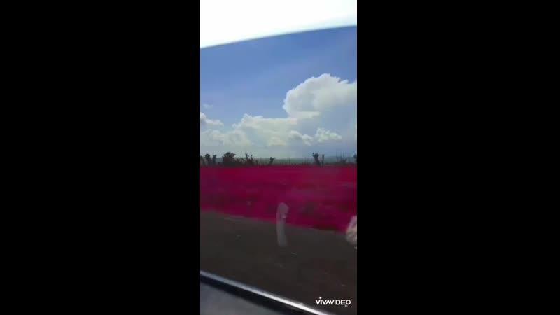 Video-b4627de59de289efa7f48c8971dced4b-V.mp4
