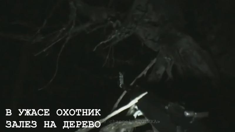 НЕЧТО ЖУТКОЕ ПРЕСЛЕДОВАЛО ОХОТНИКА В ТАЙГЕ 5 Жутких Видео про Непонятных Существ Снятых на Камеру