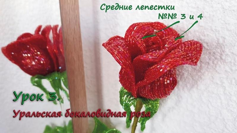 Бокаловидная роза 🌹 Урок 3 Средние лепестки 3 и 4 Cup shaped rose Lesson 3 Middle petals 3 4