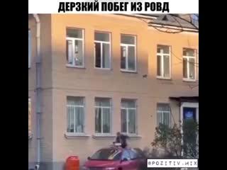 Побег из РОВД