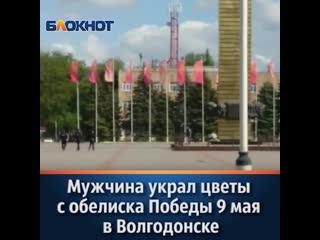 Мужчина украл цветы с обелиска Победы в Волгодонске