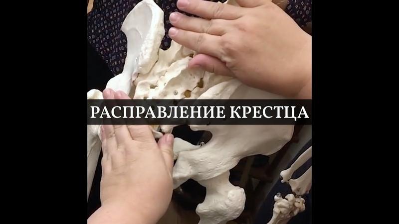 Расправление крестца как кости Остеопатическая техника Фрагмент семинара Людмилы Малышевой