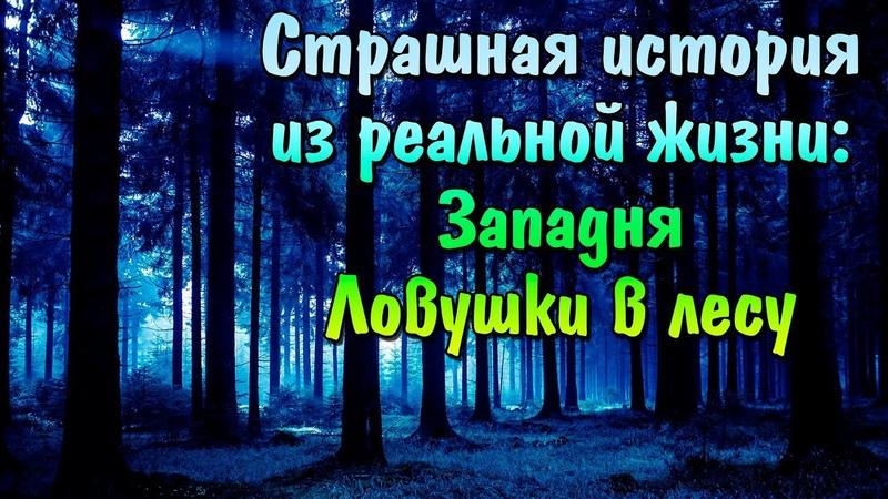 Страшная история из реальной жизни Западня Какие ловушки расставляют на людей в диких лесах