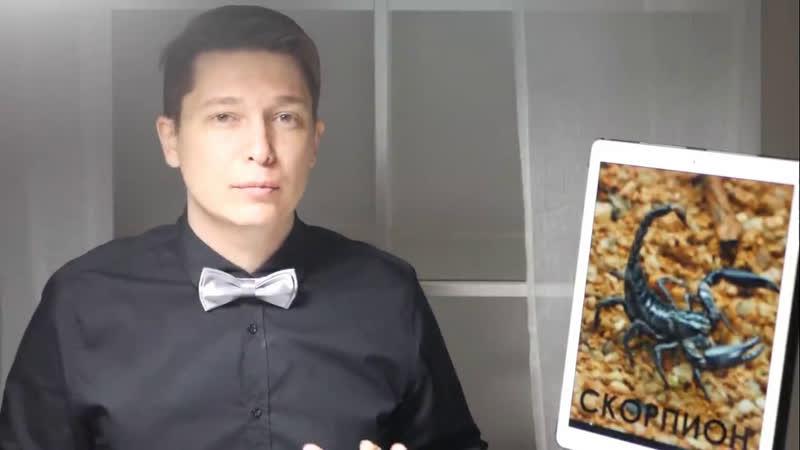 СКОРПИОН гороскоп на ИЮНЬ 2020