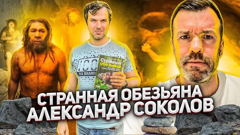 189 АЛЕКСАНДР СОКОЛОВ СТРАННАЯ ОБЕЗЬЯНА КУДА ДЕЛАСЬ НАША ШЕРСТЬ 12