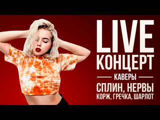 LIVE концерт: каверы на Сплина, Нервы, Макса Коржа, Гречку, Шарлот