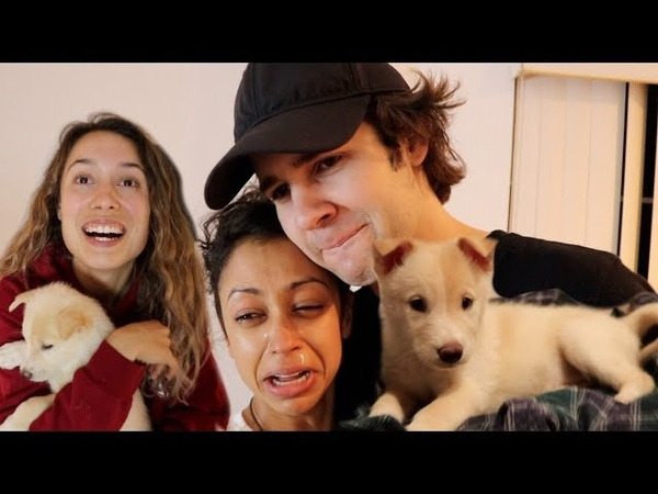 SURPRISING DAVID'S GIRLFRIEND LIZA KOSHY WITH MY GIRLFRIEND'S NEW PUPPY!!