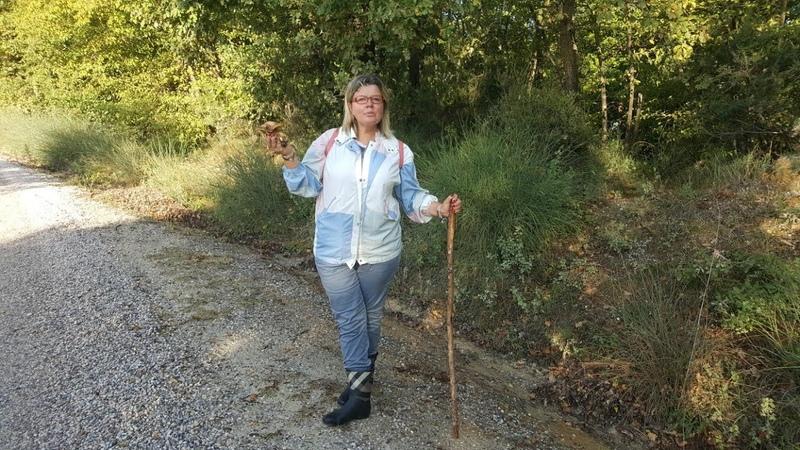 Италия Министр культуры Д Франческини прикрывает статуи чтобы увАжить мусульман Собираем грибы