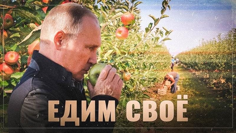 Едим своё: Россия перевыполнила план по продовольственной безопасности