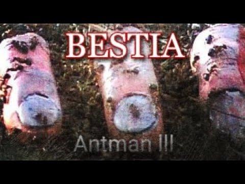 BESTIA Antman III
