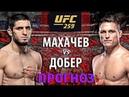 Махачев НУЛЕВОЙ🔥 UFC 259 Ислам Махачев vs Дрю Добер. Бокс vs Вольная борьба. Прогноз на бой.