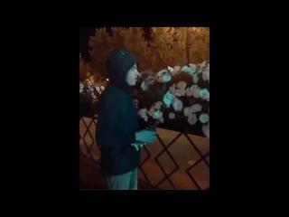 Вандалы срывают цветы с хабаровских клумб
