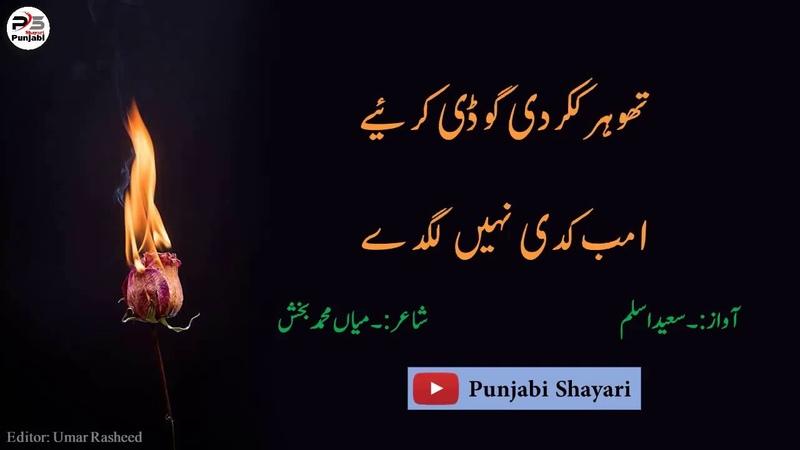 SufiKalam-- Lakh Kanjran Di Saiwa Karya - MianMuhammadBakhash By SaeedAslam PunjabiShayari