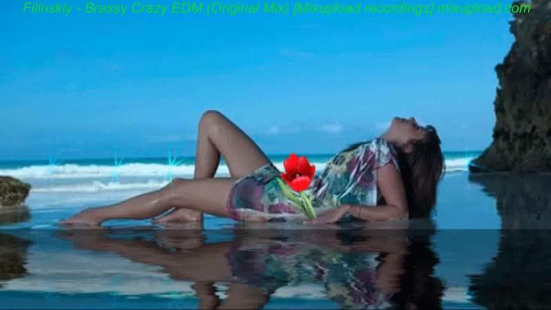 Filinskiy Brassy Crazy EDM Original Mix 720 X 1280 mp4