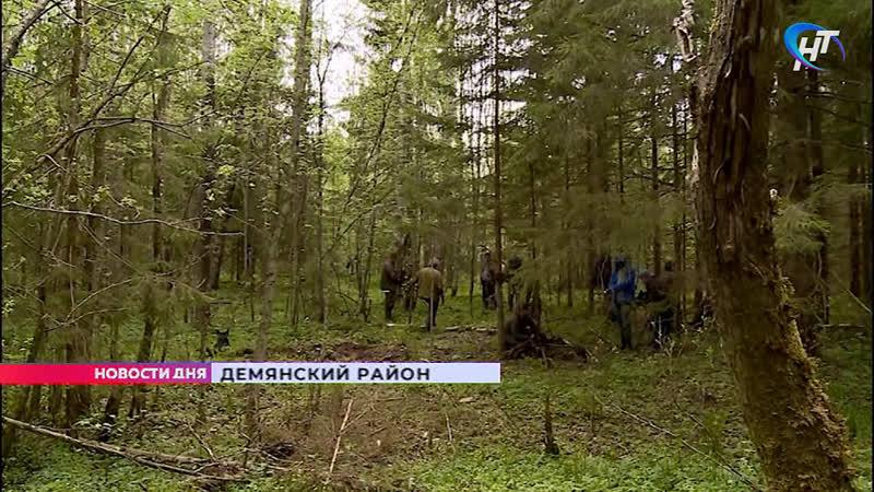 Поисковый отряд Находка обследовал обломки советского самолёта времён Великой Отечественной войны в Демянском районе