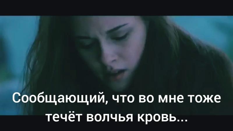 Буктрейлер Волчья кровь Страх Боль Любовь