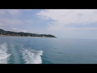 Морская прогулка на яхте в Головинке  в сопровождении стаи дельфинов! Купание в открытом море.