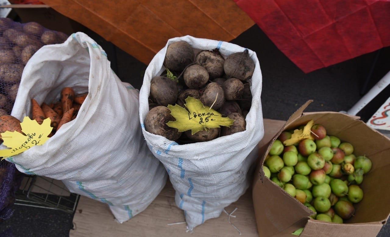 На овощной ярмарке волонтеры помогут пожилым курянам доставить покупку до машины и даже до дома