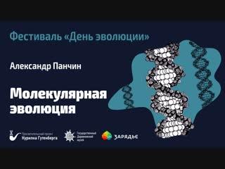 Фестиваль День эволюции | Молекулярная эволюция  Александр Панчин