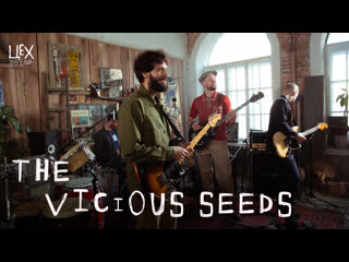 The Vicious Seeds: Цех live