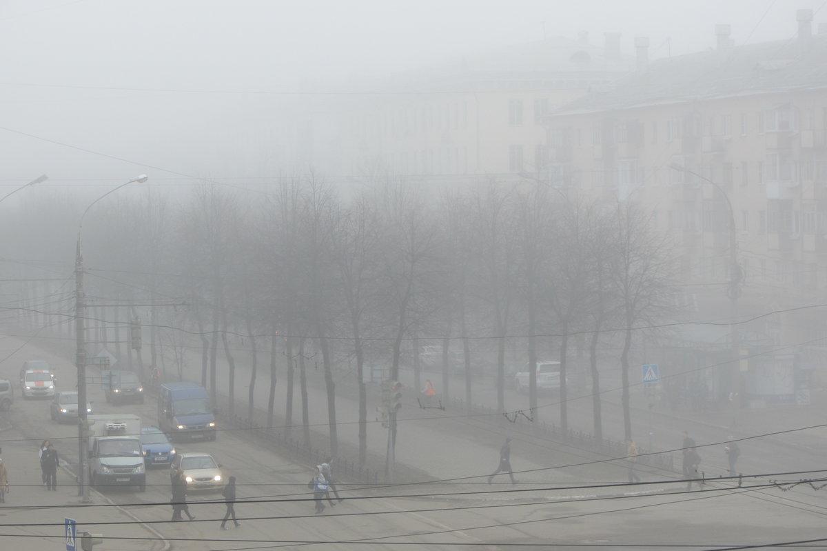 На выходных в Курской области ожидаются дожди и туманы