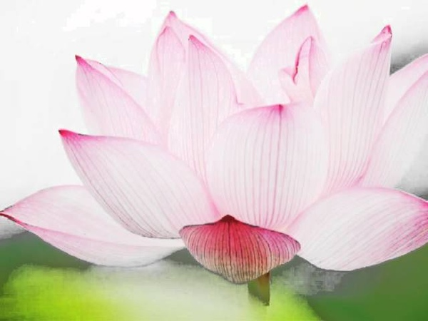 天籟梵音大悲咒唱頌 The Great Compassion Mantra