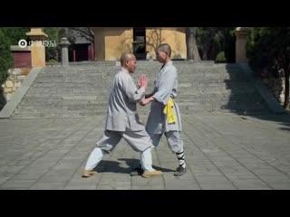 Шаолинь кунг-фу - Малый Луохан 18 рук, боевые приемы/Shaolin Kung Fu - Small Luohan 18 Hands, fighting techniques