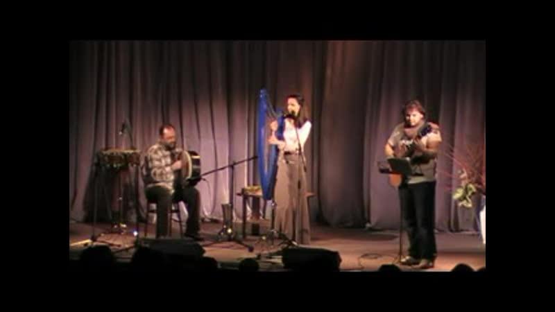 Meldis Celtic Harp Son ar Chistr