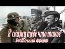 Я скажу тебе, что такое Восточный фронт. немецкие мемуары Великой Отечественной Войны.