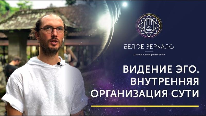 Видение Эго Внутренняя организация Сути Валентин Воронин