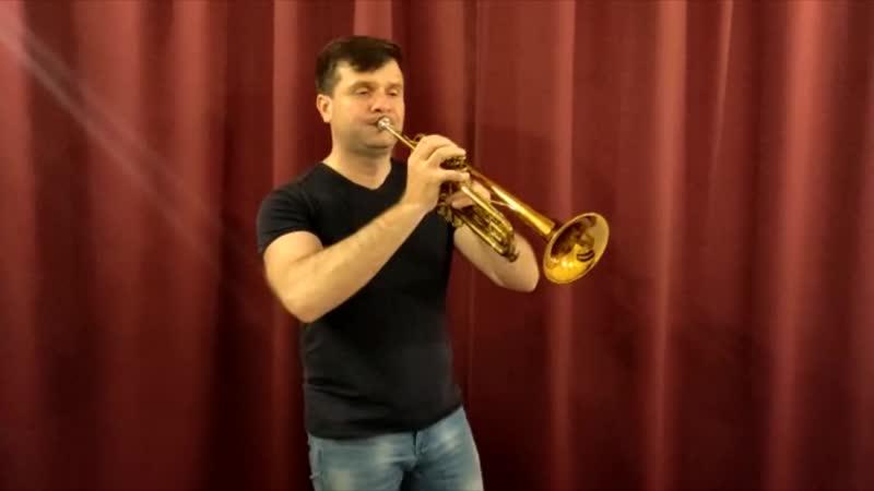 Музыкальный сундук - 4 программа