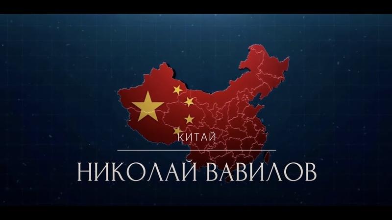 Отсталый Китай Как действительно живут рядовые китайцы и победил ли Китай бедность Н Вавилов