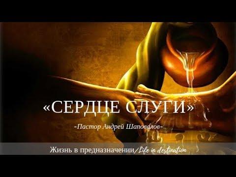 Андрей Шаповалов СЕРДЦЕ СЛУГИ Remix на тему Наивысшее Призвание