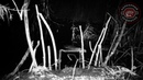 Постановка капкана на бобра Beaver Creek Разрушитель Легенд