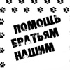 Novoshakhtinsk Bezdomnye-Zhivotnye
