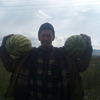 Алексей Победаш