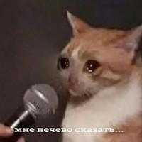 Гарипов Данияр