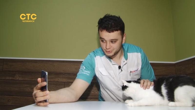 Спасти от эвтаназии: ветеринар дает вторую жизнь хвостатым пациентам