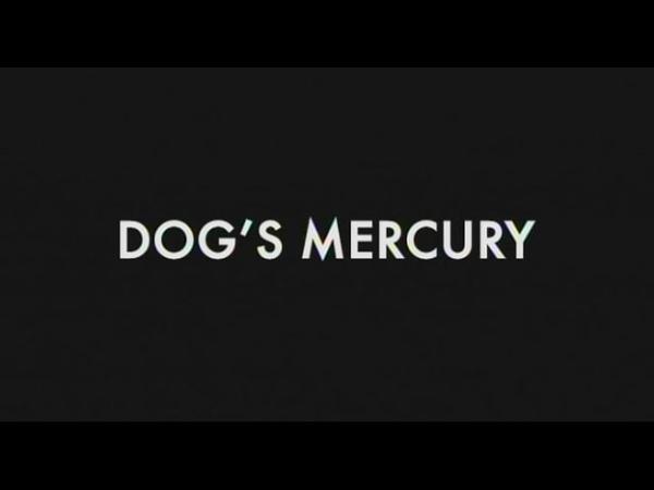 Dog's Mercury 2006 Martin Radich