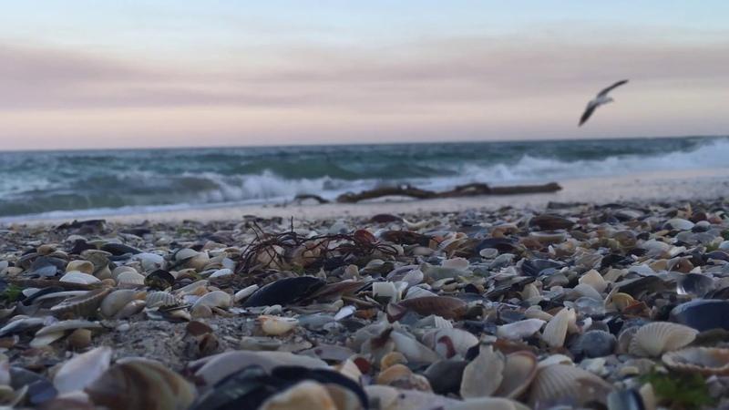Музыка моря HD 2020 Wave Sounds NO MUSIC Four Hours Шум Моря Для Сна Медитации Йоги