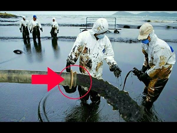 Нефть стали сливать в море миру грозит экологическая катастрофа