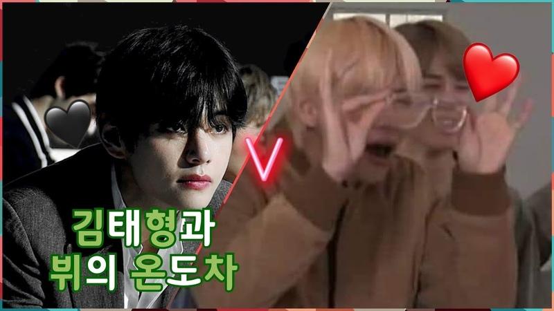 BTS V 일반인 김태형과 아이돌 방탄소년단 V의 갭차이 온도차이