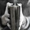 Лучшие стихи ВП | Литература