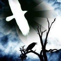 Логотип Белые Вороны (Саратов)